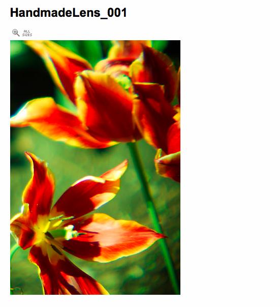 f:id:sallymylove:20100121120612p:image:w300