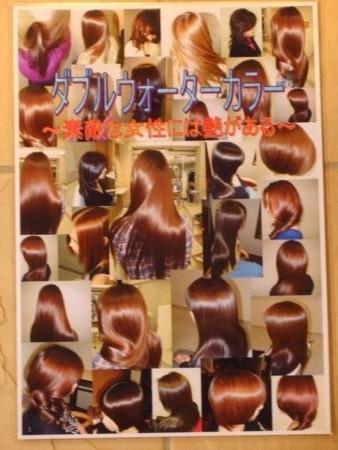f:id:salon-collage:20090128180605j:image