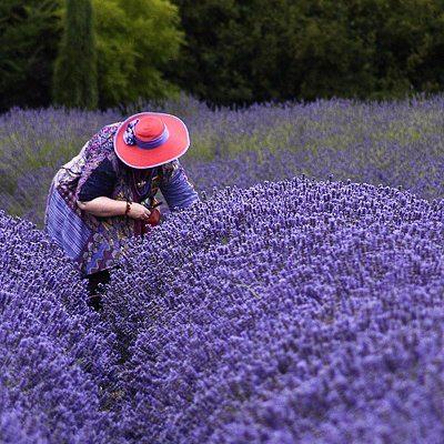 f:id:salon_bianca:20130325220544j:image:w360