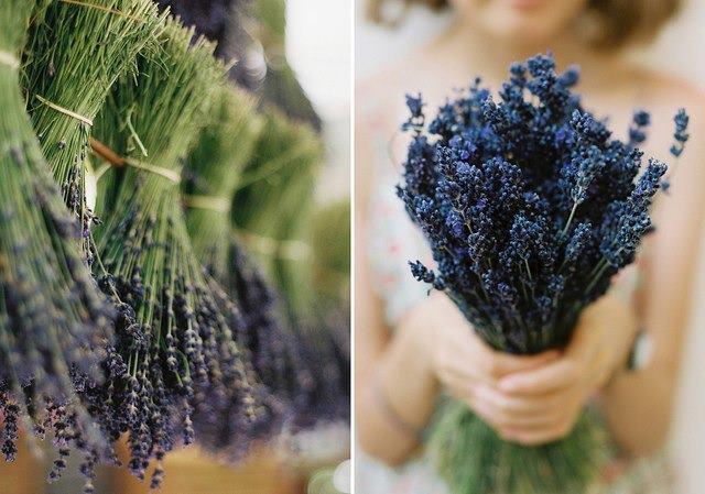 f:id:salon_bianca:20130710233609j:image:w360