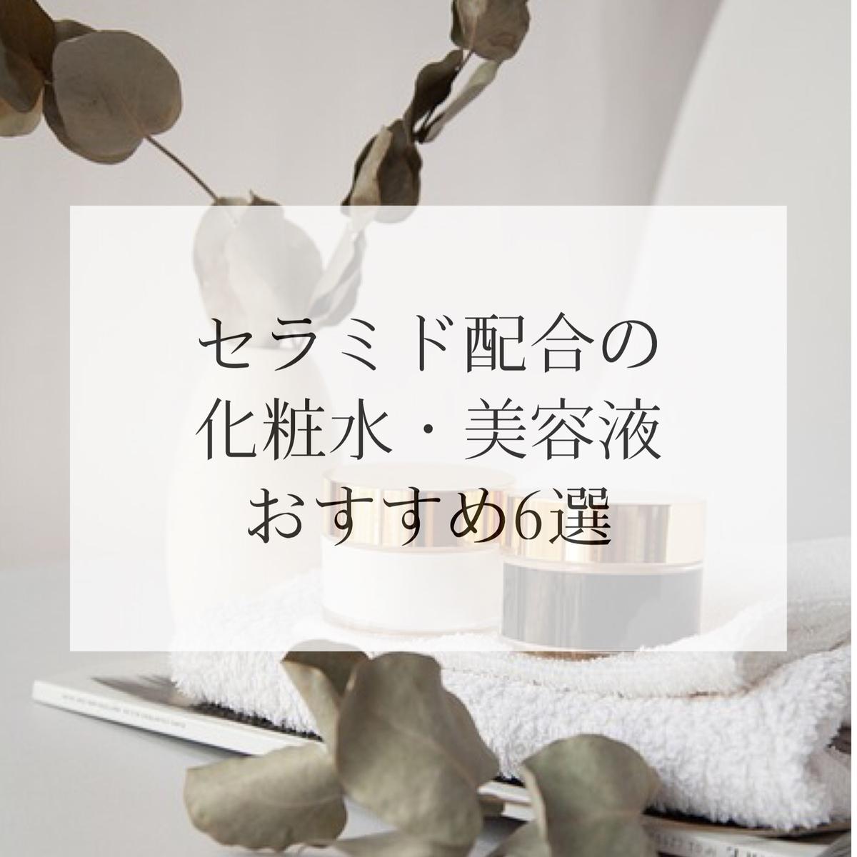 f:id:salon_moon:20210227170613j:plain
