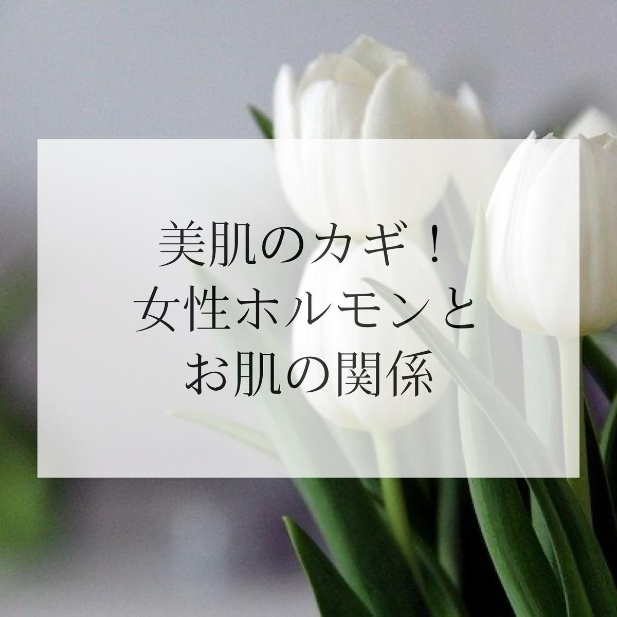 f:id:salon_moon:20210401171013j:plain