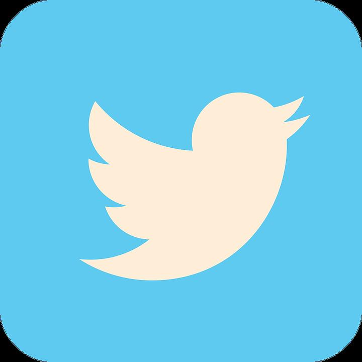 Twitterフォロワーの近況調査