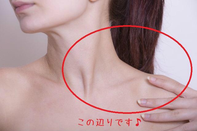 f:id:samamoto-katuki:20150609234202j:plain