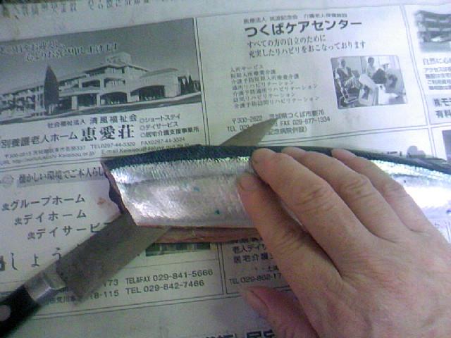 f:id:samasamasanmanosipo:20111001220553j:image