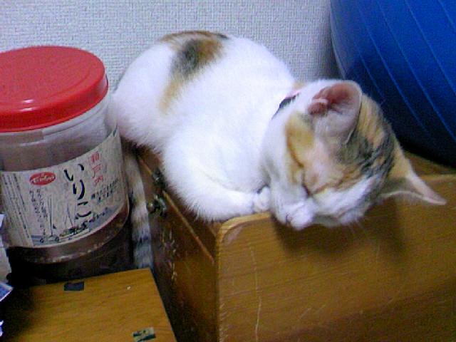 f:id:samasamasanmanosipo:20111023215621j:image