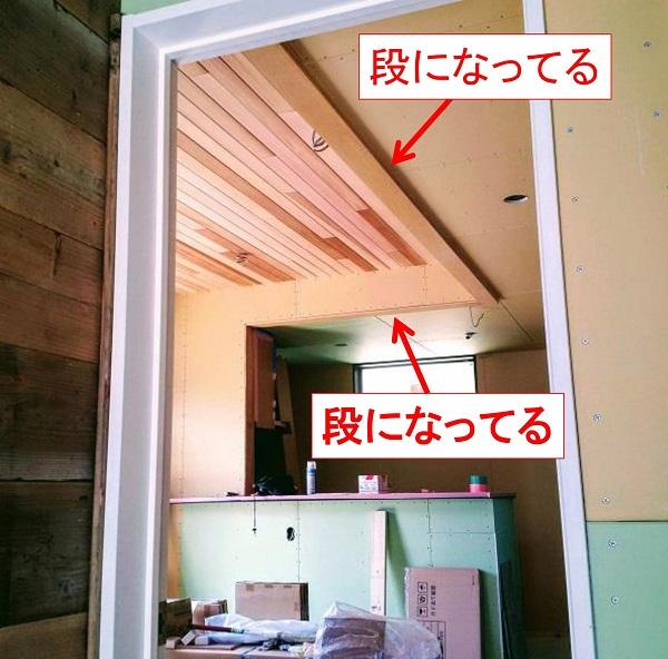f:id:sameo-japan:20190807140509j:plain