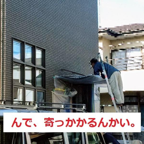 f:id:sameo-japan:20191112115517j:plain