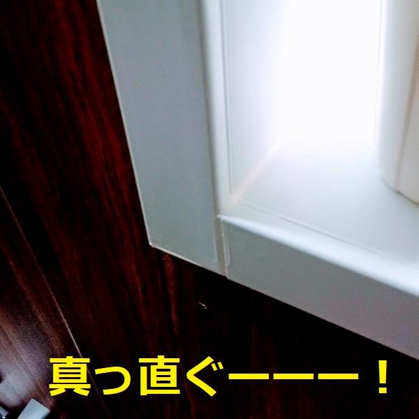 f:id:sameo-japan:20200217110140j:plain