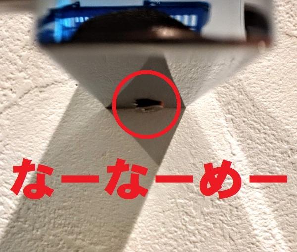 f:id:sameo-japan:20200911100554j:plain