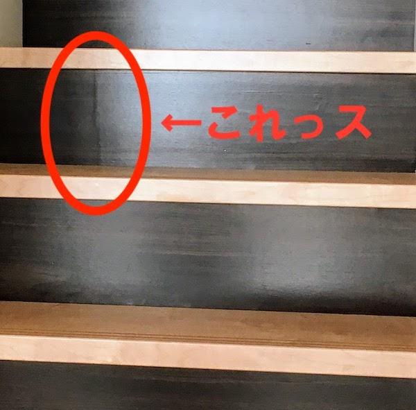 f:id:sameo-japan:20210124002332j:plain