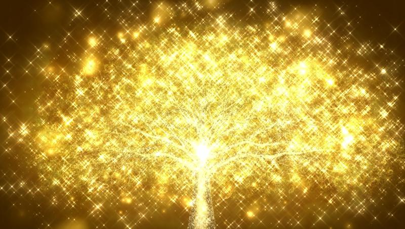 f:id:samepa:20120504142222j:image:h200