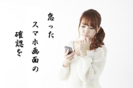 f:id:samidare_satsuki:20160520102618p:plain