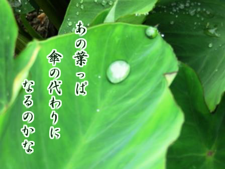 f:id:samidare_satsuki:20160615113144p:plain