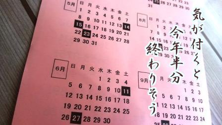 f:id:samidare_satsuki:20160623200406p:plain
