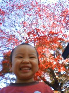 f:id:samuraiRed:20081129113500j:image