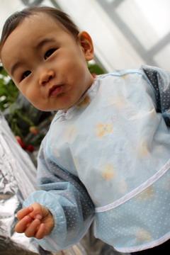 f:id:samuraiRed:20100211100857j:image