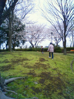 f:id:samuraiRed:20100408230101j:image