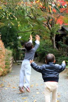 f:id:samuraiRed:20101113150754j:image