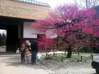 f:id:samuraiRed:20110320125744j:image
