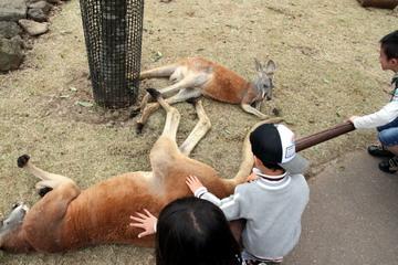 f:id:samuraiRed:20110506133248j:image