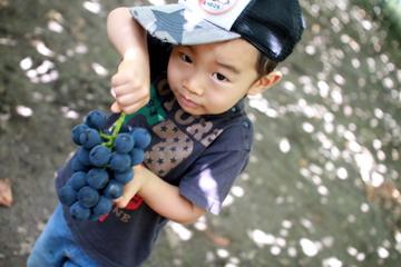 f:id:samuraiRed:20110910094425j:image