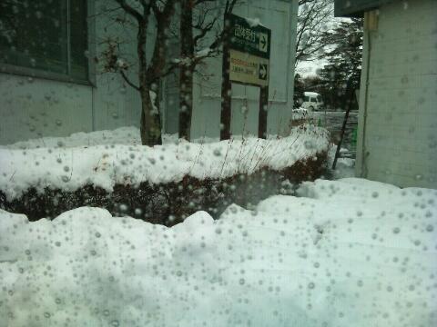 なかなかの雪ですねぇ。あと40分待ち。