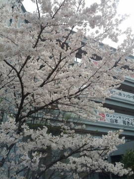 f:id:samuraiRed:20120410154143j:image