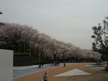 f:id:samuraiRed:20120410154209j:image