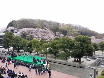 f:id:samuraiRed:20160402115554j:image
