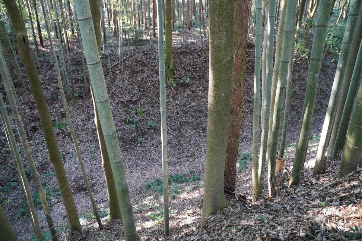 f:id:san-nin-syu:20200815102705j:plain