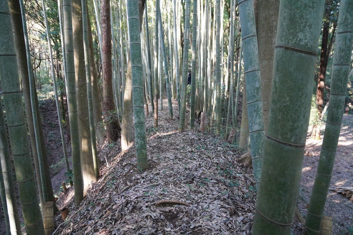 f:id:san-nin-syu:20200815102714j:plain