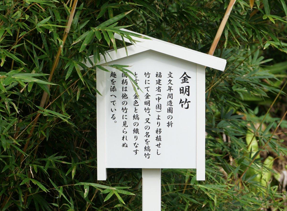 f:id:san-nin-syu:20201206094314j:plain