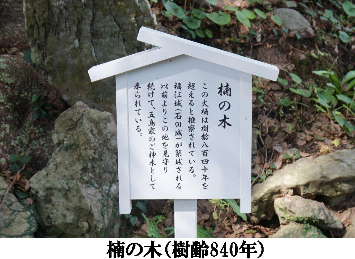 f:id:san-nin-syu:20201209101156j:plain