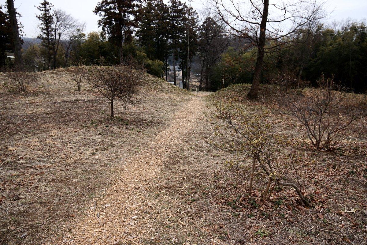 f:id:san-nin-syu:20210416164252j:plain