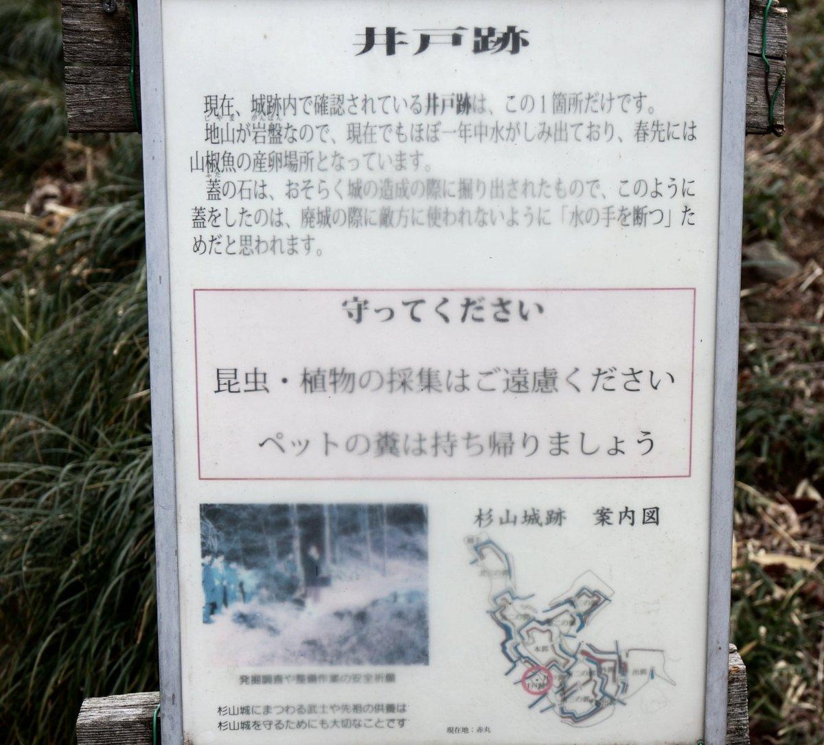 f:id:san-nin-syu:20210416164435j:plain