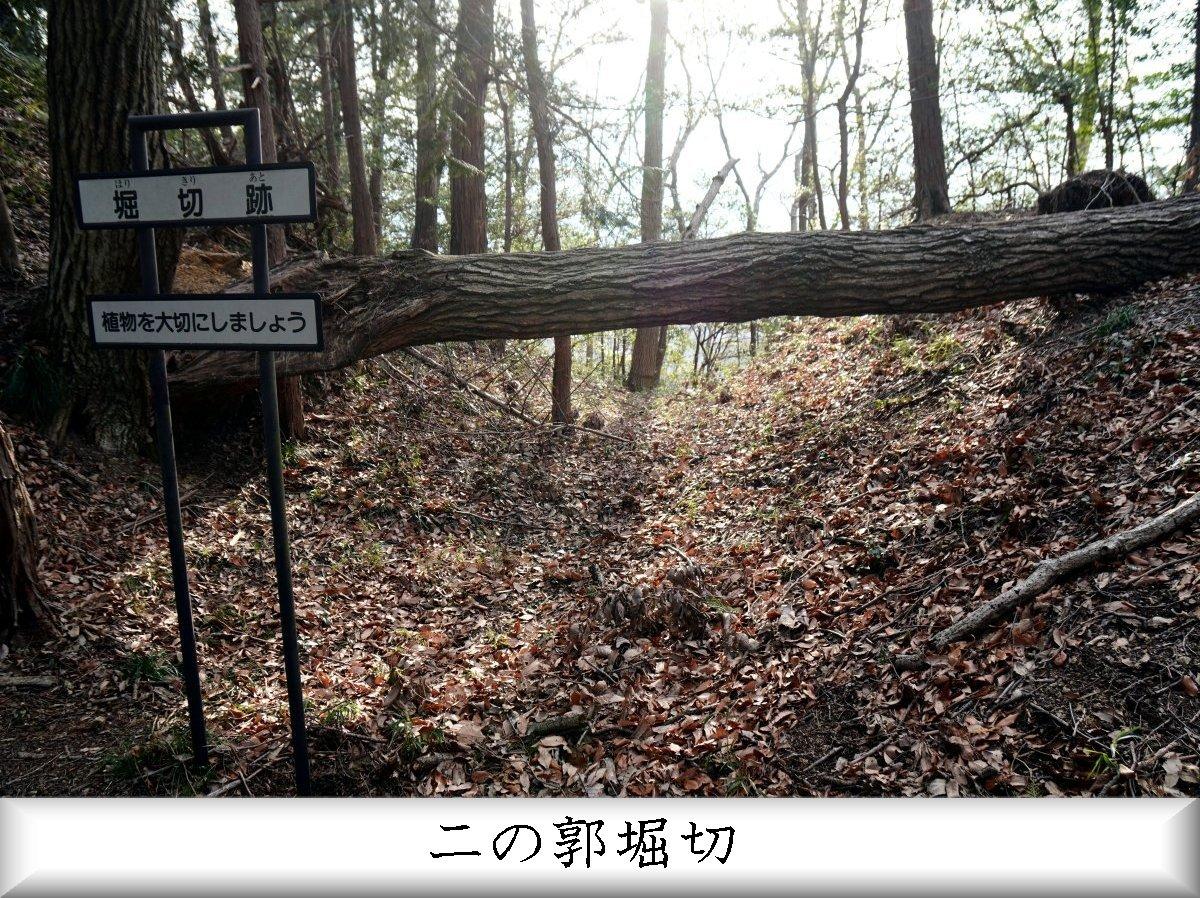 f:id:san-nin-syu:20210515221224j:plain
