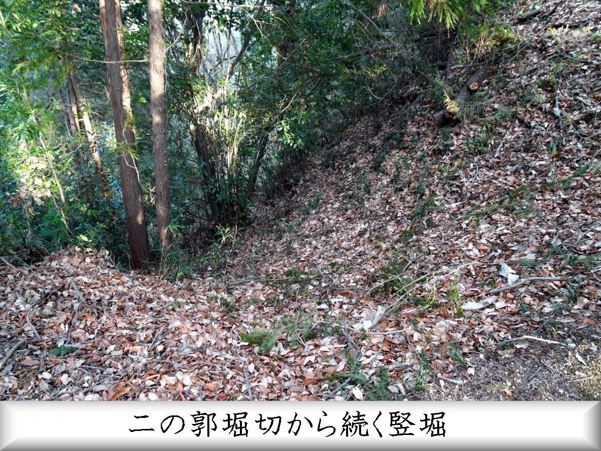 f:id:san-nin-syu:20210515221231j:plain