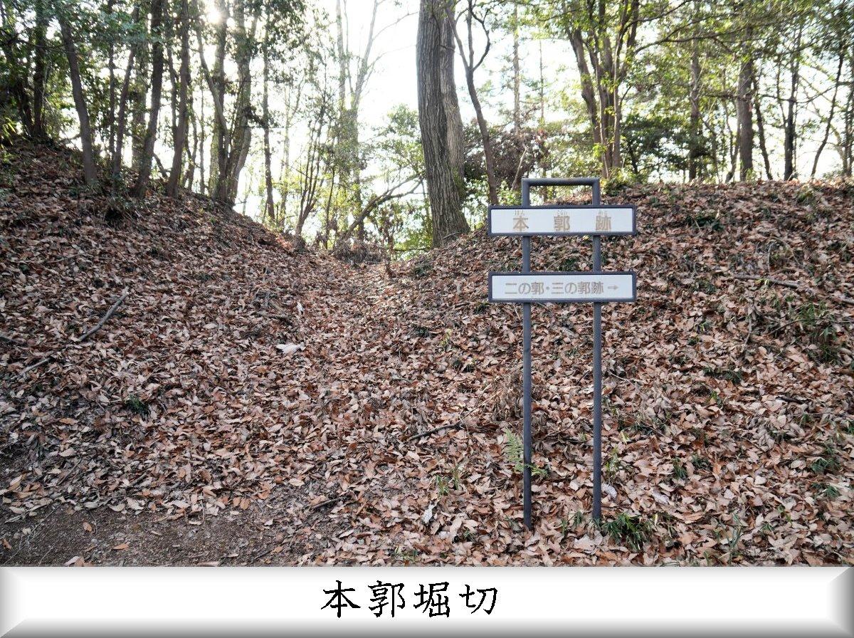 f:id:san-nin-syu:20210515221327j:plain