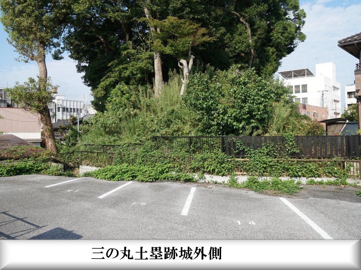 f:id:san-nin-syu:20210603185248j:plain
