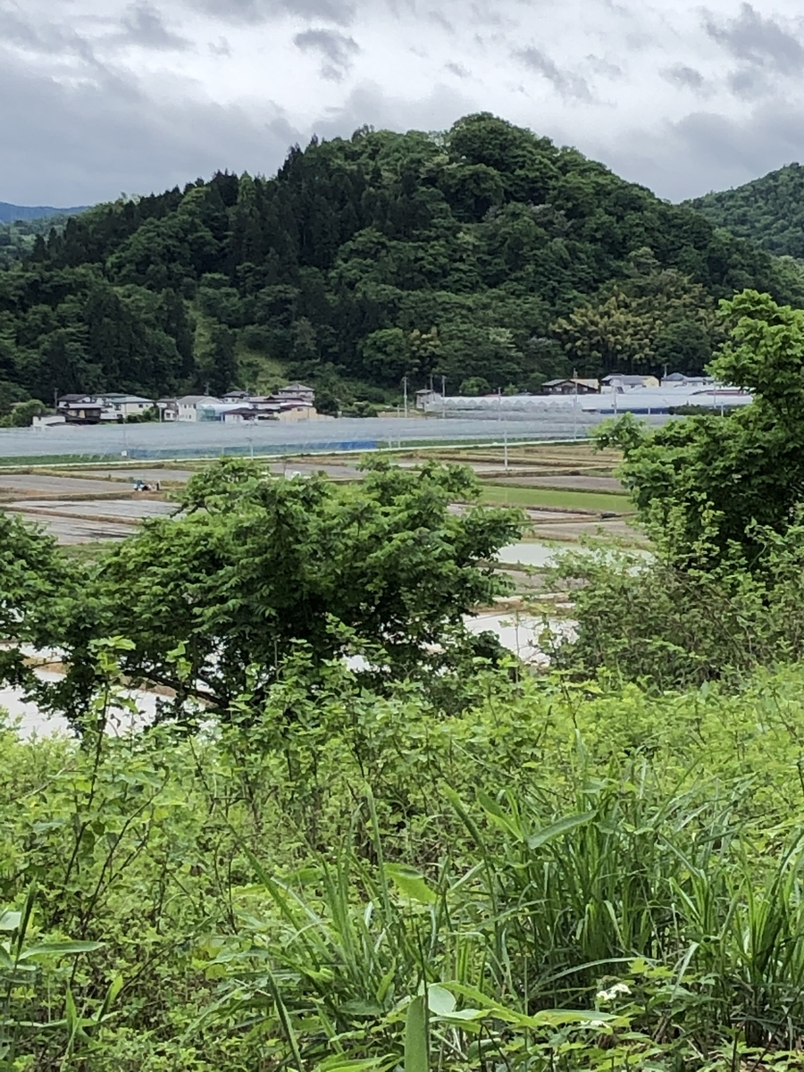 f:id:san-nin-syu:20210619142033j:plain