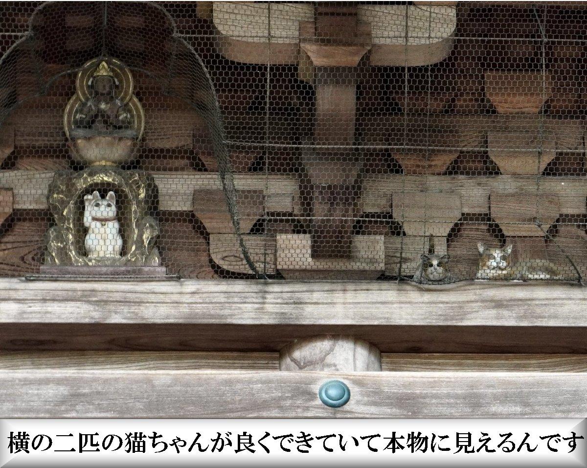 f:id:san-nin-syu:20210714230152j:plain