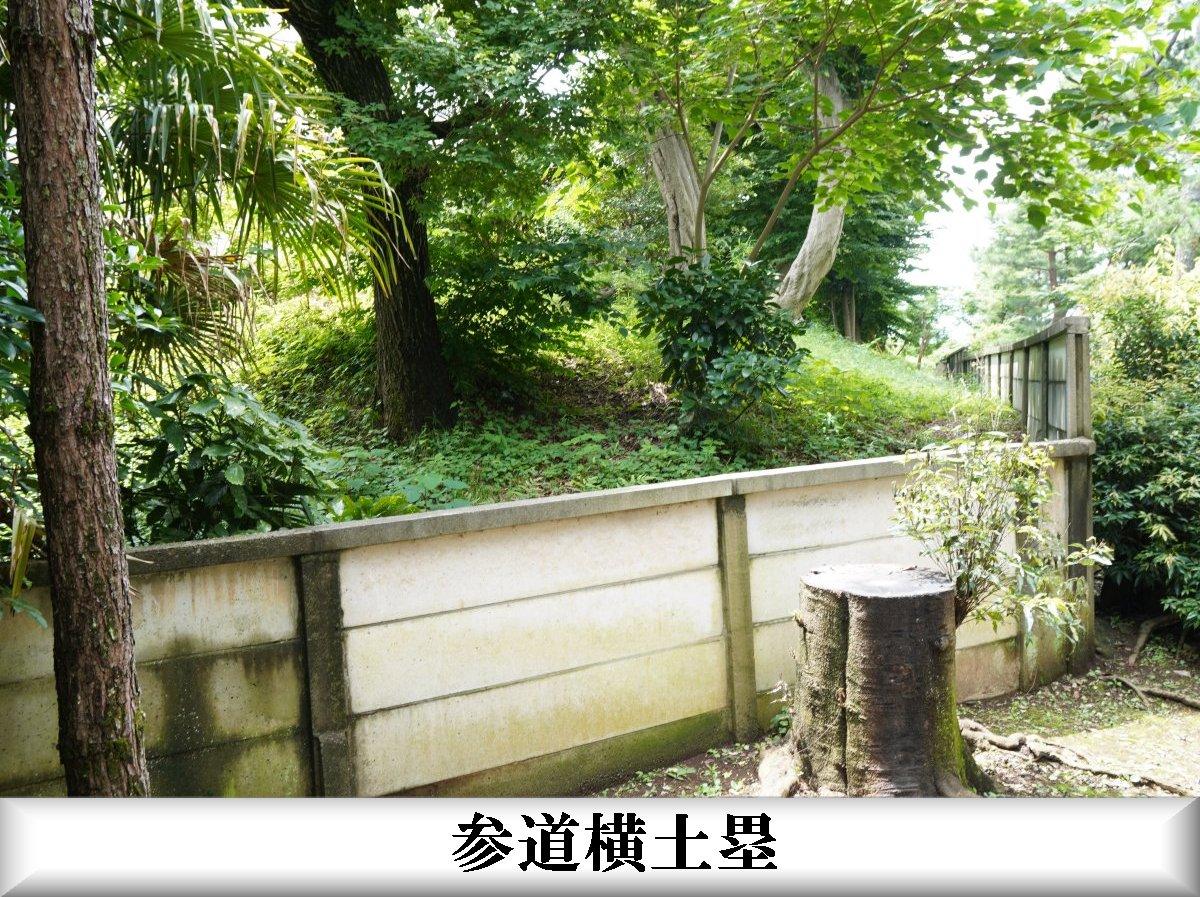 f:id:san-nin-syu:20210715124709j:plain