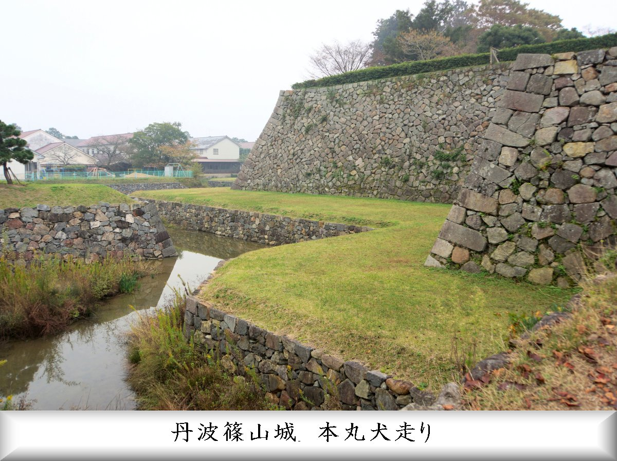 f:id:san-nin-syu:20210725220526j:plain