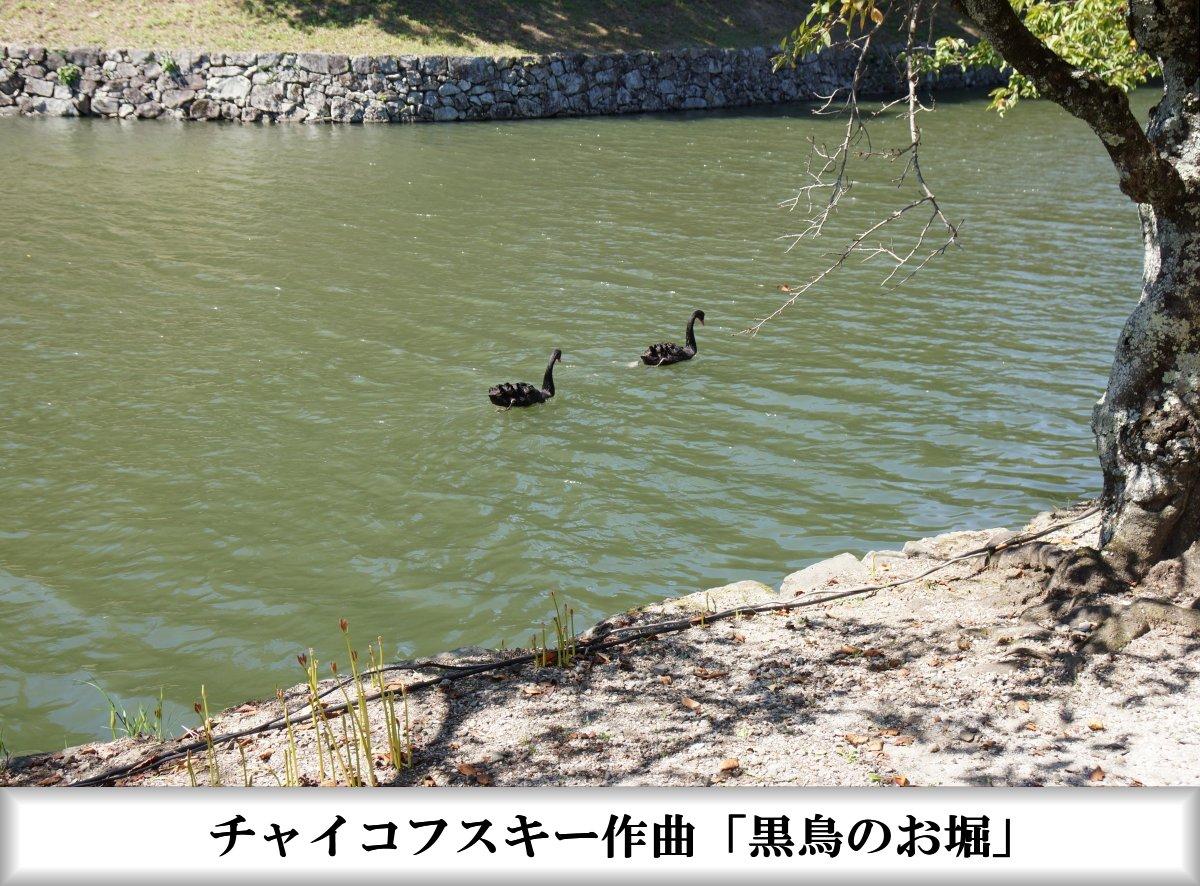 f:id:san-nin-syu:20210925162608j:plain