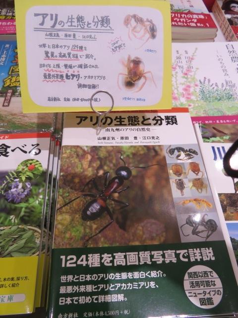 f:id:san-san-sha:20170801001502j:plain