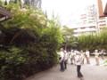 六本松の森で(4) 2009.8.1