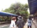六本松の森で5 2009.8.1