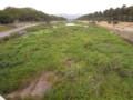 川 2009.906 賀茂川