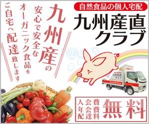 f:id:sancyoku:20170101224847j:plain